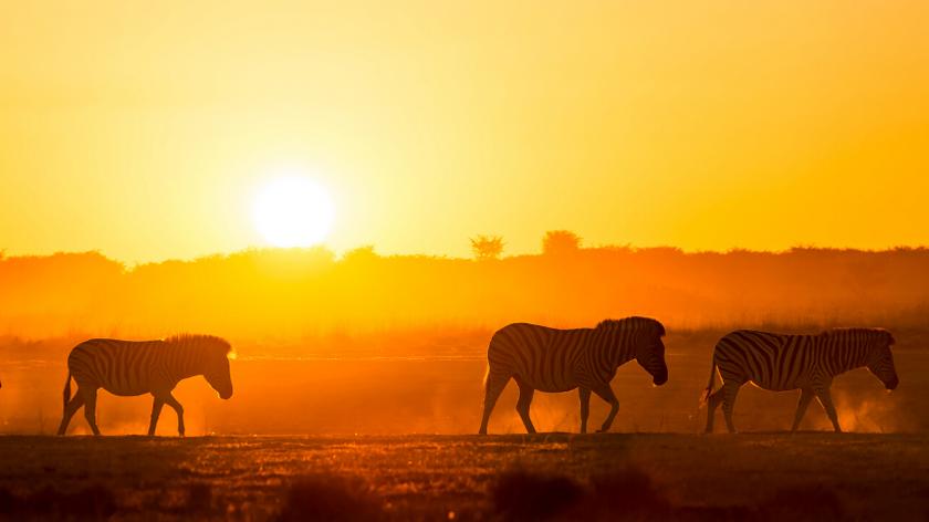 beste Reiseziele Afrikas
