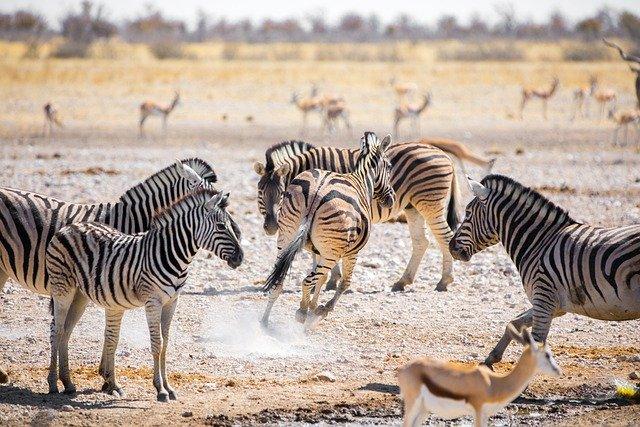 Sehenswürdigkeit in Namibia